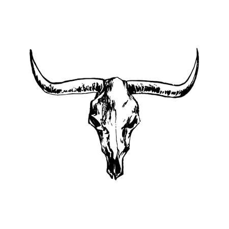 Bison skull hand drawing image. Buffalo cranium vector illustration. Cow head bone black isolated on white background.