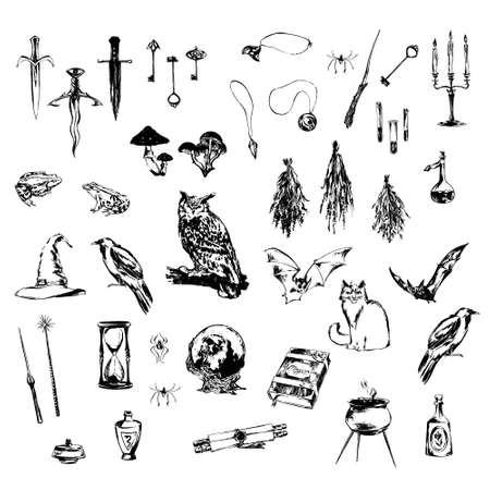 Big set of hand drawn decoration design elements for halloween party. Medieval magic objects and animals painted by ink. Grunge style vector black sketch illustration isolated on white background.