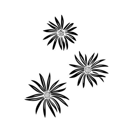 Abstract chamomile flowers set. Vector stylized decorative silhouette. Black isolated image on white background.