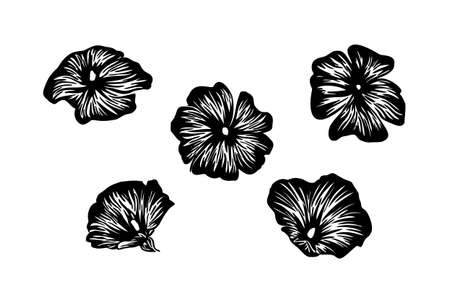 Abstract petunia flowers set. Vector stylized engraving decorative silhouette. Black isolated image on white background.
