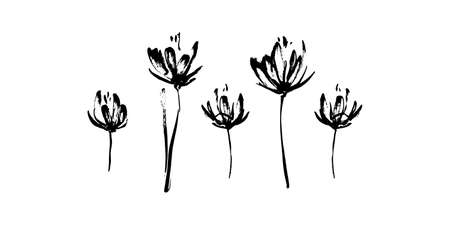 Set of hand drawn abstract modern flowers silhouette brush ink painting. Grunge style ink painted elements for design. Black isolated vector on white background. Illustration