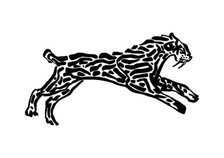 Sabre-toothed tiger animal decorative vector illustration painted by ink, hand drawn grunge cave painting, black isolated running silhouette on white background.