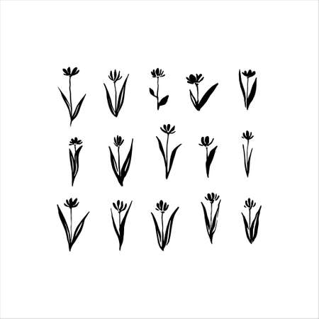 Set of hand drawn abstract modern flowers painted by ink. Grunge style brush painting vector silhouettes. Black isolated blossom plants on white background.
