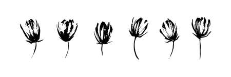 Hand drawn abstract modern flowers set painted by ink. Grunge style brush painting vector blossom silhouettes. Black isolated imprint on white background. Illustration