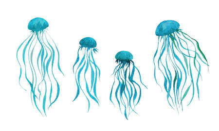 Watercolor jellyfish collection, underwater creatures painting illustration. Hand drawn cute sea animals isolated on white background. Aquarelle art design elements.