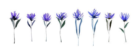 Set of hand drawn blue flowers with leaves. Sketch botanical illustration painting by watercolor isolated on white background. Decorative aquarelle art design elements.