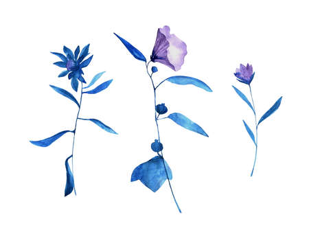 Set of hand drawn blue bell flowers with leaves. Sketch botanical illustration, campanula painting by watercolor, isolated on white background. Decorative aquarelle art design elements.