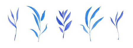 Set of hand drawn blue leaves. Sketch botanical illustration painting by watercolor isolated on white background. Decorative aquarelle art design elements.  Stock Photo