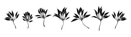 Hand drawn set of abstract plant silhouettes. Decorative vector illustration. Black isolated image on white background.
