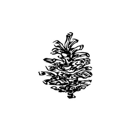Hand drawn pinecone vector illustration. Linocut pine or fir cone decorative graphic image. Stylized monochrome black ink isolated on white background.
