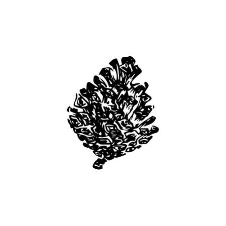 Hand drawn pinecone vector illustration. Linocut pine or fir cone decorative graphic image. Stylized monochrome sketch black isolated on white background.  向量圖像