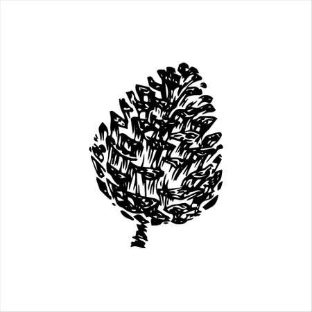 Hand drawn pinecone vector illustration. Linocut pine or fir cone decorative graphic image. Stylized monochrome doodle black isolated on white background.  向量圖像