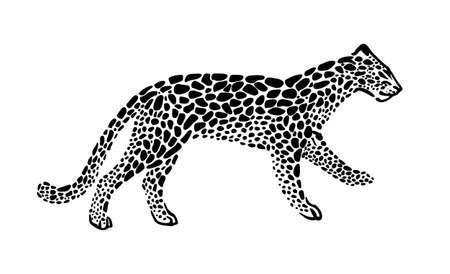 Jaguar spotted silhouette in walking. Vector wild animal graphic illustration. Black isolated on white background.