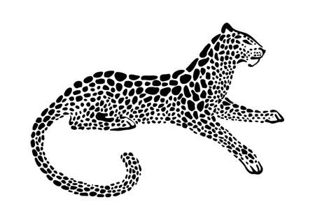 Jaguar spotted silhouette. Vector lying wildcat graphic illustration. Black isolated on white background.