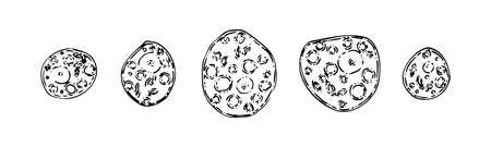 Set of hand drawn dysentery amoebas. Sketch outline microbiology illustration, black isolated vector on white background.