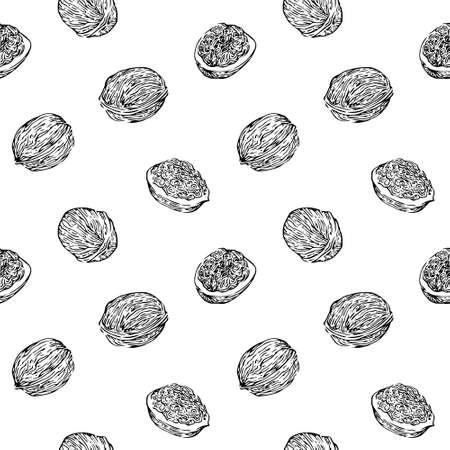 Hand drawn walnuts seamless pattern, black ink drawing sketch vector illustration on white background.