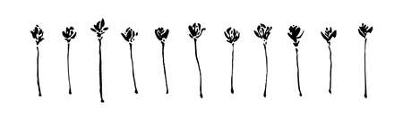 Set of hand drawn wild flowers. Outline wild plants ink painting. Black isolated floral sketch vector on white background.
