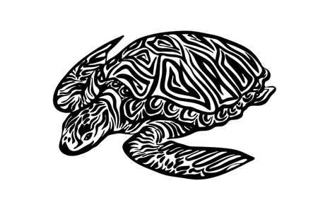 Hand drawn ornate turtle sketch. Vector black ink drawing animal isolated on white background. Graphic illustration. Vector Illustration