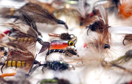 An assortment of fly-fishing flies Archivio Fotografico