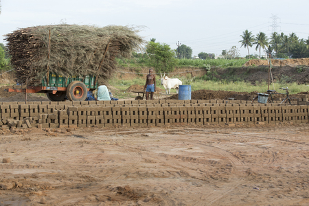 work less: Asia India Tamil Nadu Sengal Soolai village. June 2014. All people of the village work 12 hours a day, 6 days per week, doing hand made bricks for buildings and house. They earn less than 50 dollars per month. Manufacturing of bricks from the beginning to Stock Photo