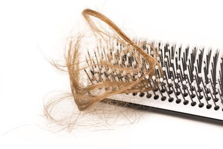 calvicie: Primer plano de la caída del cabello, el pelo largo, la alopecia en el fondo blanco con el cepillo, peine nadie