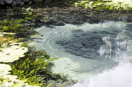 Sulphurate sulphur mine under the water, Bali, Udud