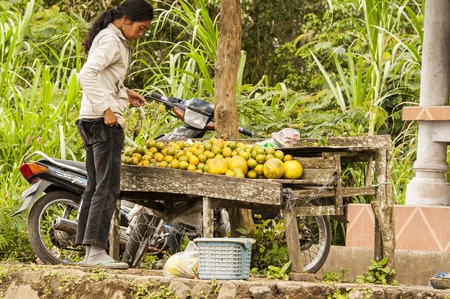 Woman buying organic fruits on the market in the village