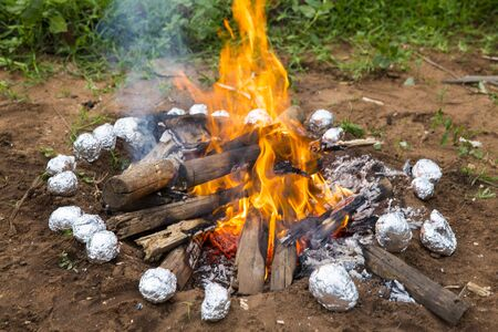 Burning wood in a brazier potatoes in aluminium foil, in the garden India