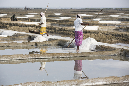 PONDICHERY, PUDUCHERRY, TAMIL NADU, INDIA - MARCH CIRCA, 2018. Unidentified men workers picking up, collecting the salt, in big salt fields, manual labour, organic agriculture, very hard job Editöryel