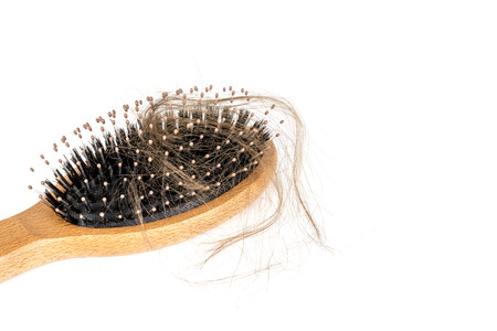 Wood hairbrush on white background. Close-up with long brown hair. Hair loss problem. Health care concept Фото со стока