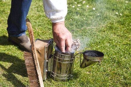 Hand of beekeeper in protective clothing switching on the old smoker with brush on grass garden. Smoke to transfer bees, to visit a hive. Authentic true scene of life