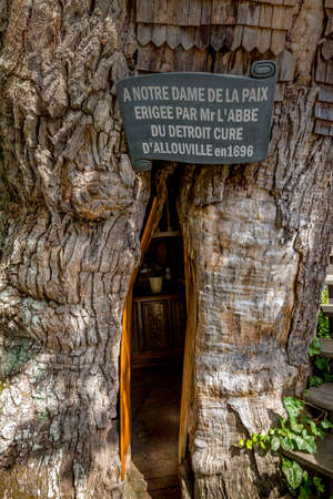 ALLOUVILLE BELLEFOSSE, FRANCE - SEPTEMBER Circa, 2020. The Oldest oak 1200 years old. With a little church chapel in the trunk. Famous place to visit for tourism.