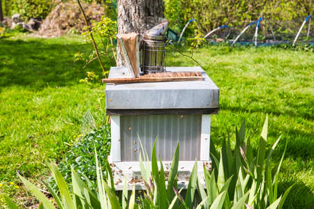 Old Smoker standing on the hive. A bee smoker is a device used in beekeeping to calm honey bees. It is designed to generate smoke from the smouldering of various fuels, hence the name. Imagens
