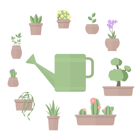 Vector illustration of set of plants in pots with watering can on white background