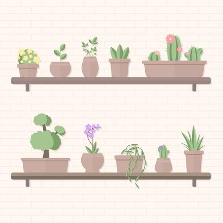 Vector illustration of set of plants in pots standing on shelves on brick background