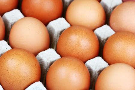 batch: Batch of eggs in cartboard, closeup Stock Photo
