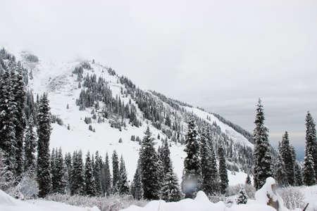 mountains almaty Stock Photo