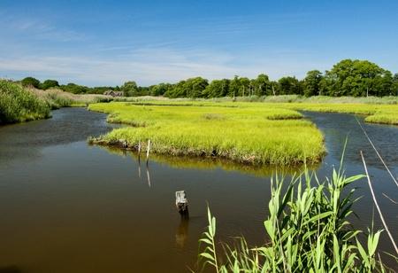 inlet bay: Natural wetlands Stock Photo