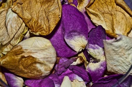 A pile of dried rose petals Imagens