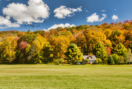 A home tucked into the trees on the side of a mountain during autumn