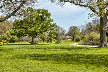 A curved path through a beautiful park in the spring