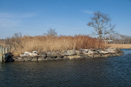 Rock reinforced shore leading into a marina with reeds and waterfront homes in the background