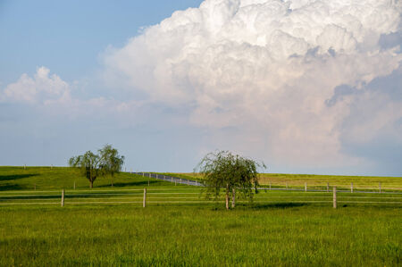 A fenced meadow on a bright sunny day with a threatening thunderhead cloud over head.