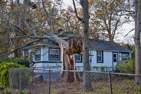 A tree felled by Sandy lands on a home inflicting damage. Stock Photo - 37748875