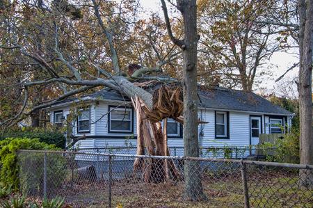 Een boom geveld door Sandy landt op een huis toebrengen van schade.