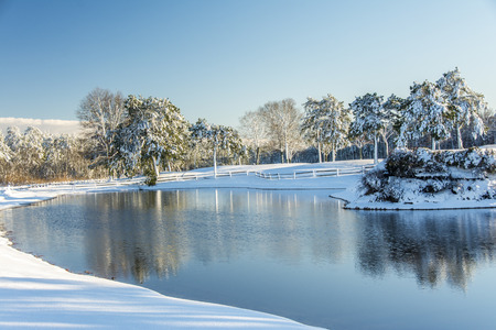 frigid: Snow covered land with a pond reflecting the trees