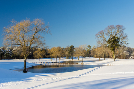 is covered: Snow covered landscape