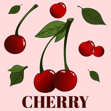 Set contain a number of cherries with and without leaves, grouped and separated