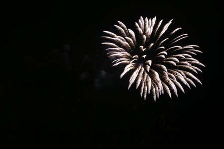 dazzlingly: firecracker