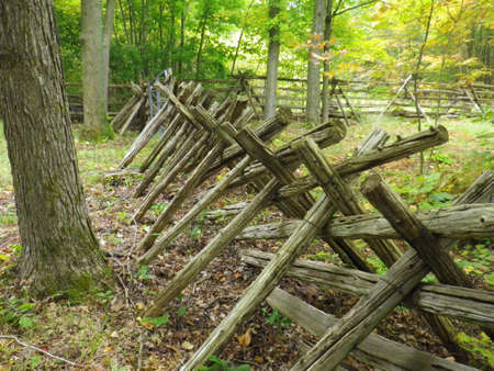 Log fence held with wire winding through a forest Stock Photo - 17638074